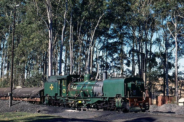 South Africa Railways NGG16 Garratt 110 in green livery at Izingolweni