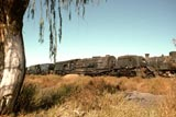 Steam locos in storage at De Aar
